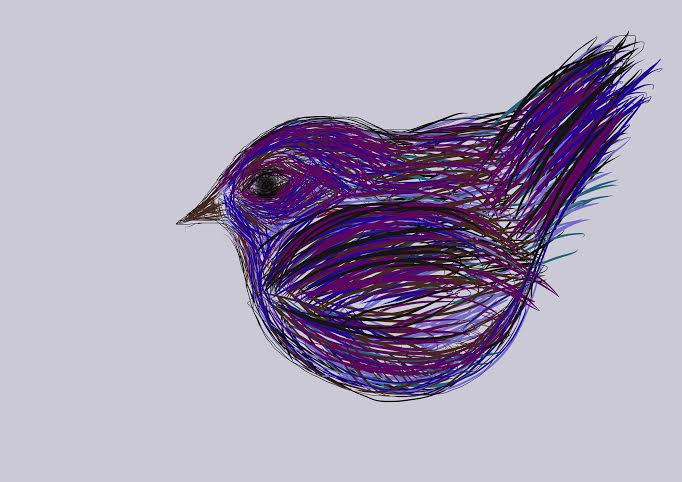 Procreate bird (682x482)